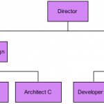 Functional Organizational Template