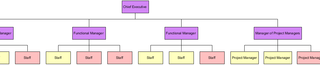 Matrix Organizational Template