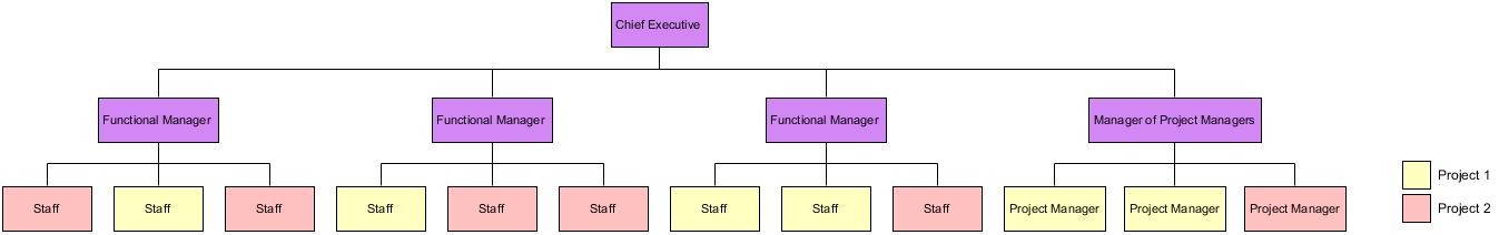 Matrix Organizational Template - Visual Paradigm Community