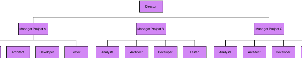 Project-based Organizational Template