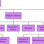 Sample Divisional Organizational Template